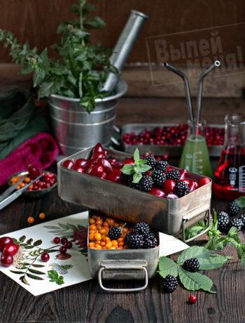 ингредиенты для домашнего алкоголя